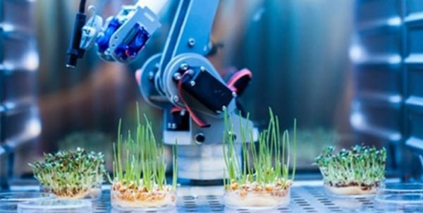 فراوری محصولات تازه با راه اندازی 5 شتابدهنده تخصصی در حوزه زیست فناوری